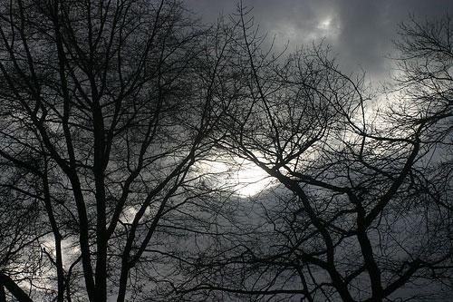 cuando-el-cielo-esta-gris.jpg