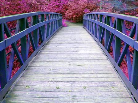 puente-azul.jpg