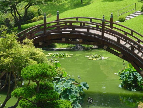 puente-verde.jpg
